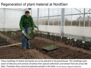 Nmnm Regeneration of plant material at NordGen fg