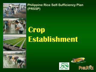 Crop Establishment
