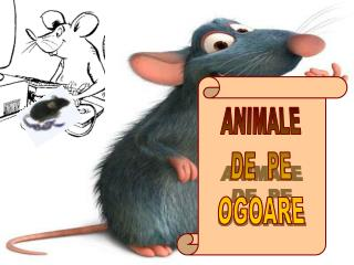 ANIMALE DE  PE OGOARE