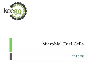 Microbial Fuel Cells