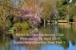 HRAA St. Ives Gardening Club Wednesday 16 April 2014 Gardener's Question Time Part V