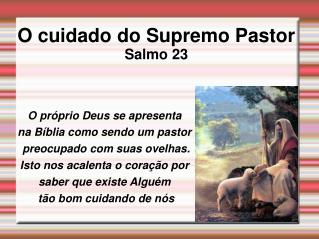 O cuidado do Supremo Pastor Salmo 23