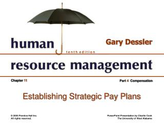 Establishing Strategic Pay Plans