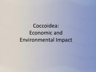 Coccoidea: Economic  and  Environmental  Impact