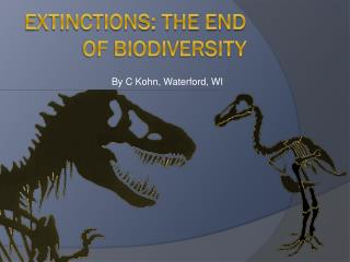 Extinctions: The End of Biodiversity