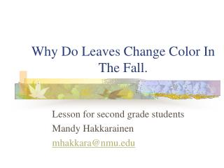 Why Do Leaves Change Color In The Fall.