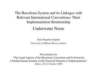 Irini Papanicolopulu University of Milano-Bicocca (Italy)