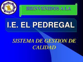 I.E. EL PEDREGAL