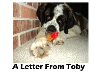A Letter From Toby