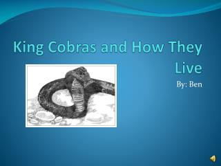 King Cobras and How They Live