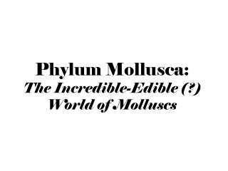 Phylum Mollusca: The Incredible-Edible (?)  World of Molluscs