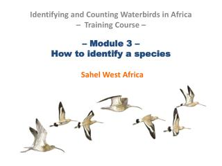 – Module 3 –  How to identify a species Sahel West Africa