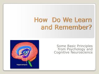 How  Do We Learn  and Remember?