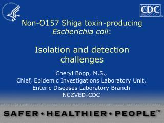Non-O157 Shiga toxin-producing  Escherichia coli : Isolation and detection challenges