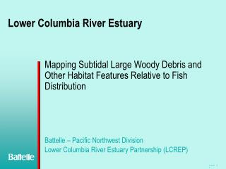 Lower Columbia River Estuary