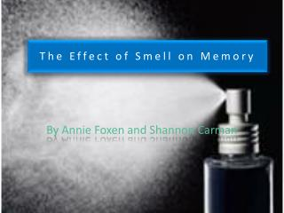 The Effect of Smell on Memory