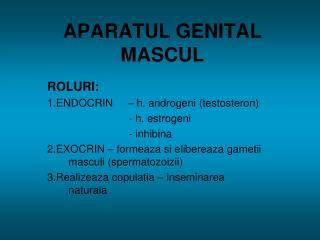 APARATUL GENITAL MASCUL