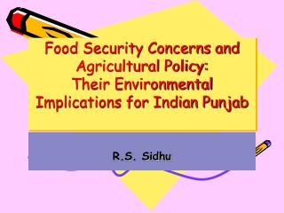 Food Security Concerns and Agricultural Policy: Their Environmental Implications for Indian Punjab