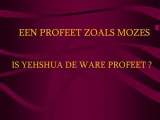 IS YEHSHUA DE WARE PROFEET ?