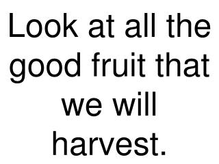 Look at all the good fruit that we will harvest.