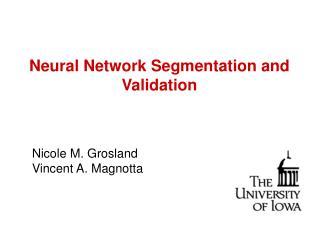 Neural Network Segmentation and Validation