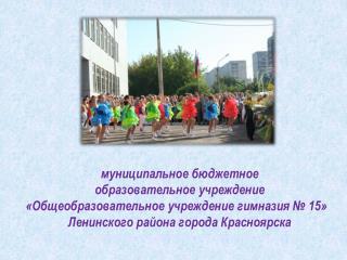 муниципальное бюджетное  образовательное учреждение «Общеобразовательное учреждение гимназия № 15»