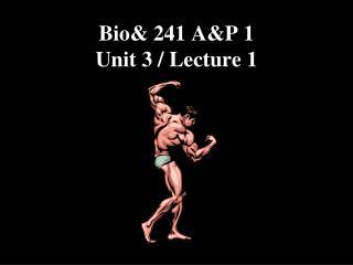 Bio& 241 A&P 1  Unit  3  / Lecture  1