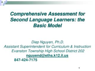 Comprehensive Assessment for Second Language Learners: the Basic Model