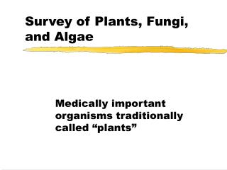 Survey of Plants, Fungi, and Algae