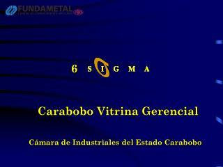 Carabobo Vitrina Gerencial
