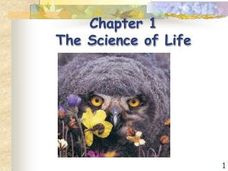 Chapter 1  The Science of Life