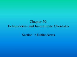 Chapter 29: Echinoderms and Invertebrate Chordates