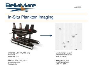 In-Situ Plankton Imaging