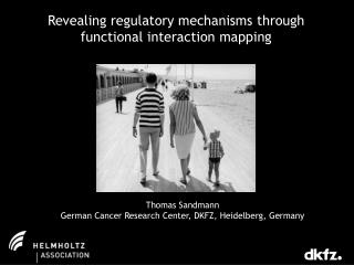 Revealing regulatory mechanisms through functional interaction mapping