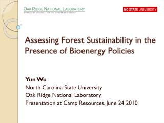 Assessing Forest Sustainability in the Presence of Bioenergy Policies