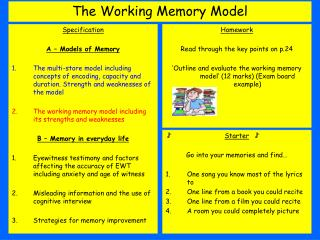The Working Memory Model