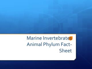 Marine Invertebrates Animal Phylum Fact-Sheet