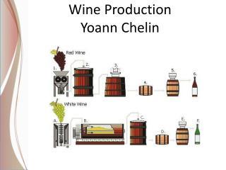 Wine Production Yoann Chelin