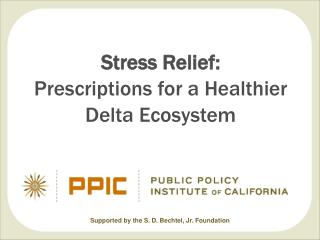 Stress Relief: Prescriptions for a Healthier Delta Ecosystem