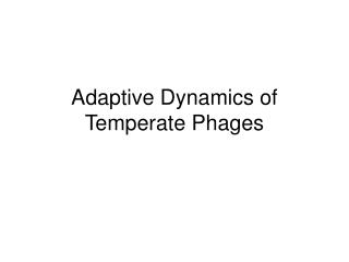Adaptive Dynamics of Temperate Phages