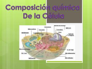 Composici�n qu�mica  De la C�lula