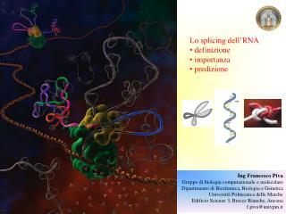 Lo splicing dell'RNA  definizione  importanza  predizione