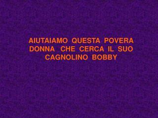 AIUTAIAMO  QUESTA  POVERA DONNA   CHE  CERCA  IL  SUO CAGNOLINO  BOBBY
