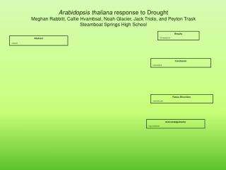 Arabidopsis thaliana  response to Drought