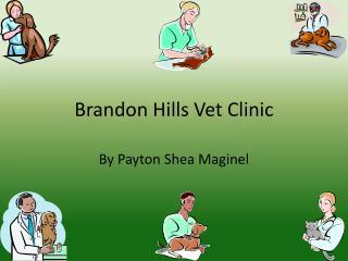 Brandon Hills  V et  C linic