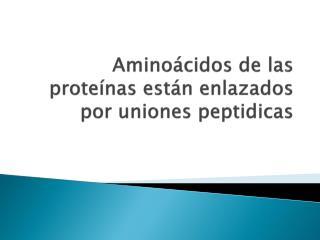 Aminoácidos de las proteínas están enlazados por uniones  peptidicas
