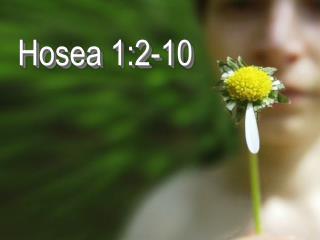 Hosea 1:2-10