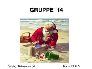 GRUPPE  14