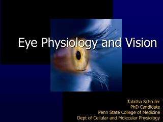 Eye Physiology and Vision