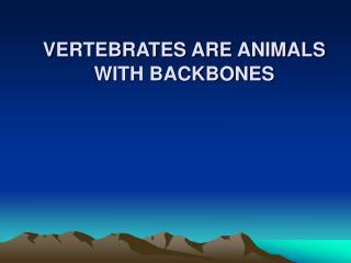 VERTEBRATES ARE ANIMALS WITH BACKBONES